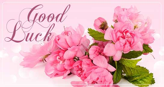 Good Luck Messages: Good Luck Wishes & Status   143 Greetings