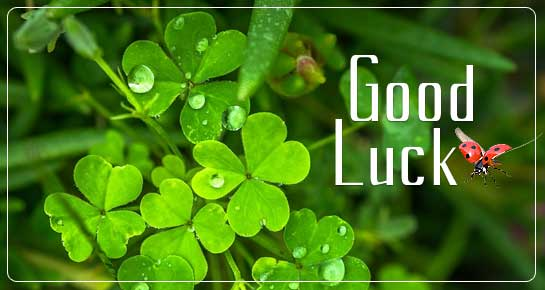 Good Luck Messages Good Luck Wishes Amp Status 143 Greetings