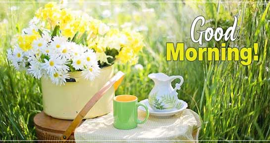 Good morning messages best good morning wishes 143 greetings good morning messages m4hsunfo