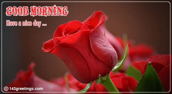 goodmorning wishes