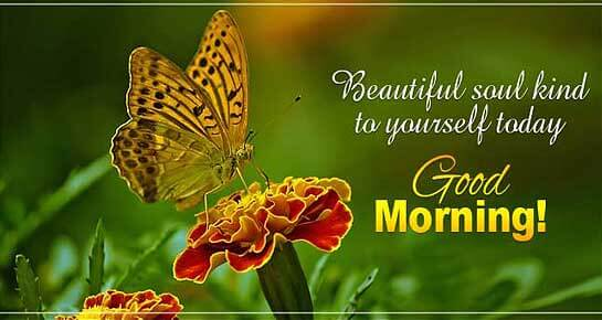 Love Good Morning Wishes